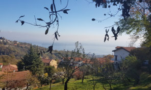 Terreno edificabile vista lago a Massino Visconti